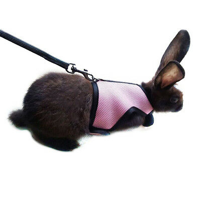 Soft Harness With Elastic Leash For Rabbit Bunny Pet Supply Outdoor