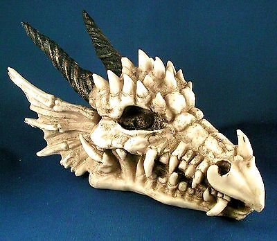 Dragon Skull Jewelry, Trinket, Coin Or Treasure Box ** Nib