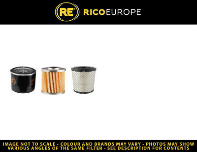 Belle 731 Filter Service Kit - Air, Oil, Fuel Filters