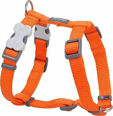 Red Dingo Plain ORANGE Harness for Dog or Puppy | Sizes XS - LG | FREE P&P