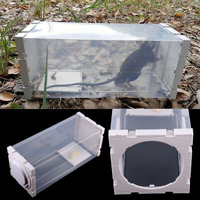 Humane Rat Trap Cage Animal Pest Rodent Mice Mouse Bait Catch Capture White
