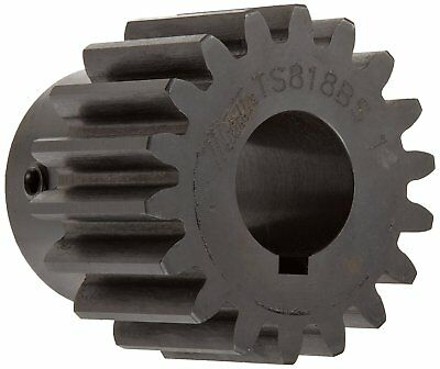 Martin TS1216BS 5/8 Spur Gear, 20° Pressure Angle, High Carbon Steel, Inch, 12