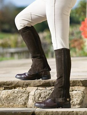 shires adults suede half chaps Brown Extra Small