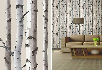 Birch Trees Forest Wallpaper Themed Feature Wall Luxury Fine Decor Cream