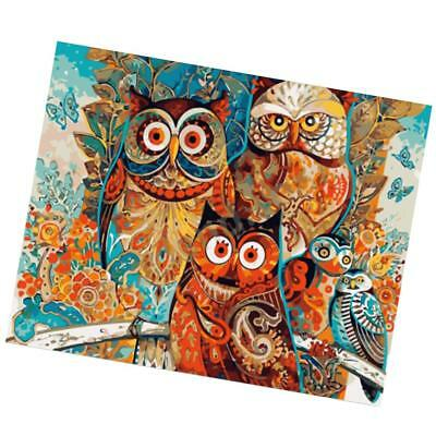 DIY Paint By Numbers Kit Oil Painting Canvas Picture Artwork Home Decor Owl