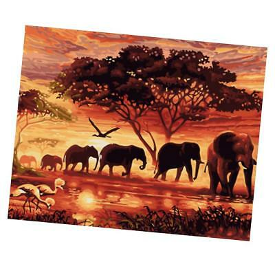 Canvas DIY Digital Oil Painting Kit Paint by Numbers Home Decor -Elephants