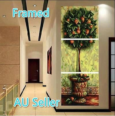 Framed Set of Three 40*50cm Paint by Number Kit Dancing Girl S5 F3P002 AU STOCK
