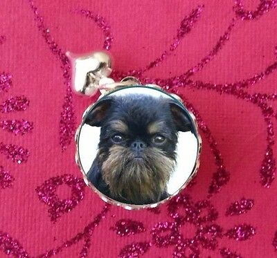 Cute Black Brussels Griffon, Dogs Silver Glass Bubble Charm, Pendant USA