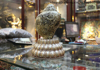 Tibet Buddhism Seashell Silver White Jambhala Buddha Ride Dragon shell conch