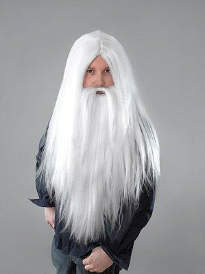 Fancy Dress Wizards Wig And Beard Set Merlin Gandalf Dumbledore Style White