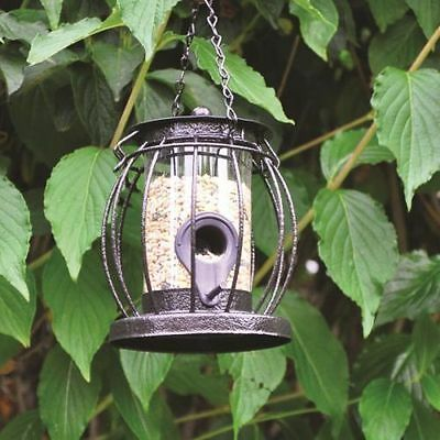 Mini Caged Seed Feeder Small Lantern Shaped Seed Bird Feeder With Squirrel Guard