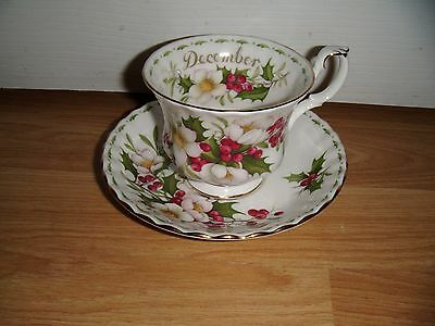 Royal Albert Flowers Of The Month ~ December ~ Christmas Rose ~ Cup & Saucer