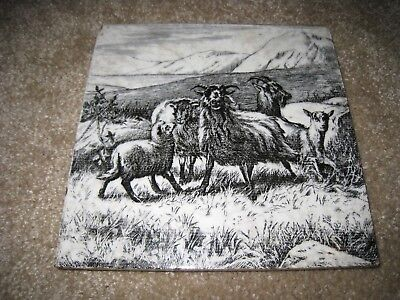 Minton Minton's antique 6 inch tile - sheep lamb field - William Wise 1879