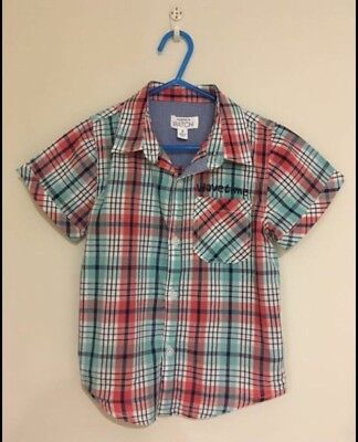 Size 4 Boys Pumpkin Patch Shirt