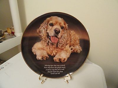 Adoring Eyes Collector's Plate by The Danbury Mint Cocker Spaniel Dog