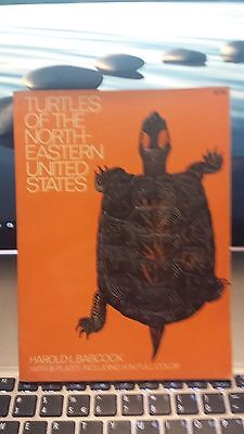Turtles of the Northeastern United States by Harold L. Babcock (1971, Paperback)