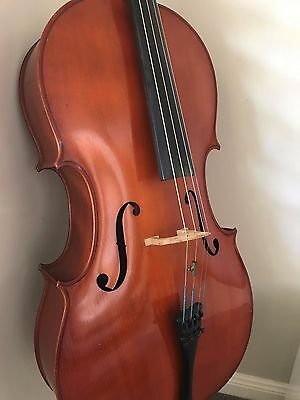 Benedikt Lang Cello (full size) plus hard case