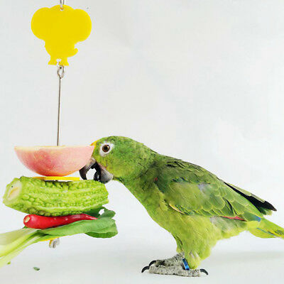 Pet Bird Parrot Stainless Steel Acrylic Skewer Fruit Forks Toys Food Cage Feeder