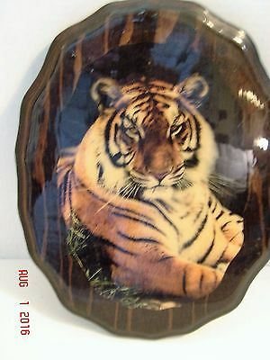 "Bengal Tiger Laquered Wood Picture 12"" Tall"