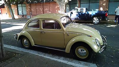 1963 Volkswagen Beetle - Classic  1963 VW BUG, FULLY RESTORED CALIF CAR, 100% RUST FREE SHOW CAR
