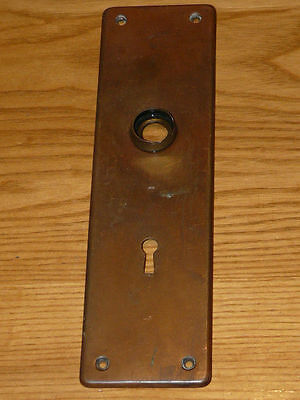 Vintage Brass Door Knob Backplate   8''78  X  2''½  (inches).