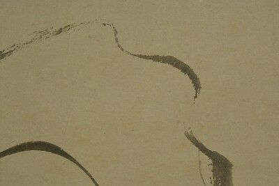Orchid Painting Hanging Scroll Picture Japanese Japan Asian Old ink Antique a132