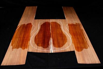 Tasmanian Blackwood Acoustic Guitar Kit - Oversized Back and Sides