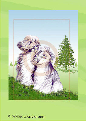 "ACEO PRINT. BEARDED COLLIE. 1.5"" X 2.5"". From acrylic painting."