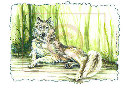 "ACEO PRINT. WOLF. 1.5"" X 2.5"". From Watercolour painting."