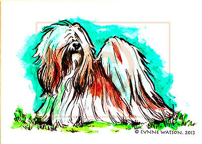 "ACEO PRINT. LHASA APSO. 1.5"" X 2.5"". From Watercolour painting."