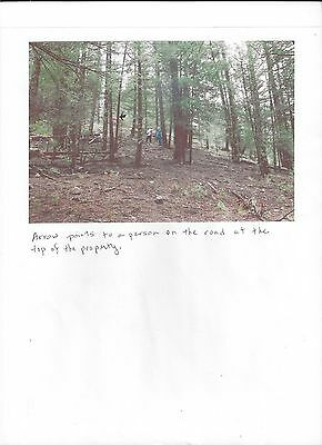 Cloudcroft, NM , 2.163 acres land. wooded & stones, Approx. 8000 ft. Elevation.