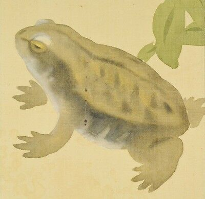 """Hanging Scroll Japanese Painting 75.4"""" Frog Taod Japan Ink Antique Rainbow b553"""