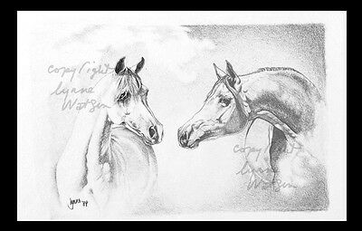 "Vintage Print. Arabian Horse.from Pencil Art.. Image 6.5"" X 4.5"""