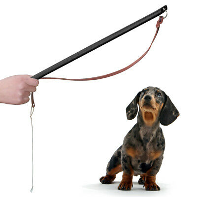 Leather Pet Dog Training Agitation Whip Animal Training Obedience Whip Brown