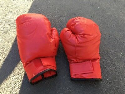 Large Adult Boxing Gloves - Red