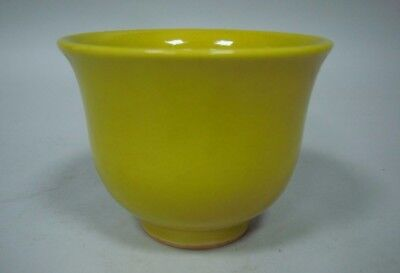 """Fine Old Chinese Yellow Glaze Porcelain Cup Signed """"ChangFengXuan"""""""