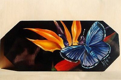 """Willow Wolfe lovely tole painting pattern packet """"Butterfly on Paradise"""""""