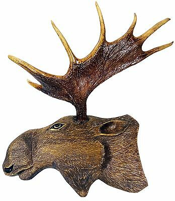 Moose antlers 7 points, with a head of wood,author's composition, size 120*70 cm