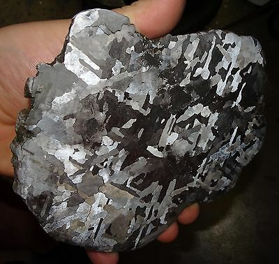 Beautiful Large  652 Gm Campo Del Cielo Etched Meteorite Slab!!!