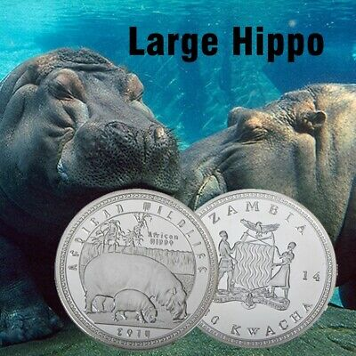 WR Wildlife African Hippo Zambia 1000 Kwacha Coin Fine Silver Arts Business Gift