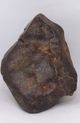 Big unclassified Chondrite meteorite NWA X 1329.5g with amazing regmaglypts