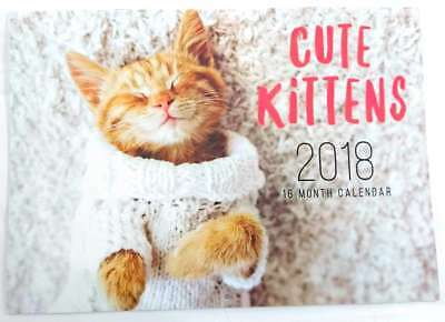 New 2018 Calendar Rectangle Wall Calendar 16 Months Pet Cats Kitten Cat