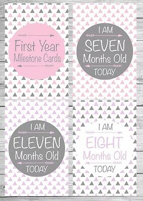 Pink/Purple/Grey 'TRIBAL' Milestone Cards (17 Cards Per Pack) {Photo Props}