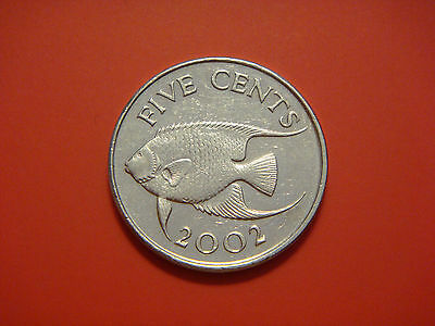 Bermuda 5 Cents, 2002,  Angel Fish