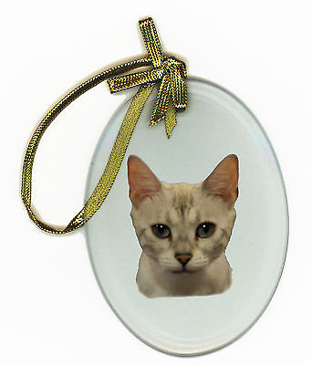 BENGAL CAT Oval Glass Ornament Suncatcher