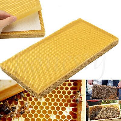 5/10 Sheet Natural Beeswax Candlemaking Bee Wax Honeycomb Beekeeping 41.5*19.5cm
