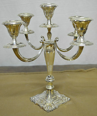 N6243 N° Splendido Candelabro 5 Fiamme In Argento Sheffield Collection