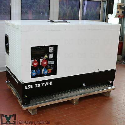 Endress Power Generator ESE 20YW-B