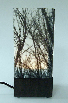 HANDCRAFTED ORIGINAL PHOTO-ART ELECTRIC TABLE LAMP By SANDY MIDDLETON