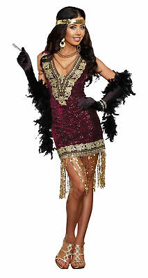 Dreamgirl 1920S Womens Adults Costumes Sophisticated Lady